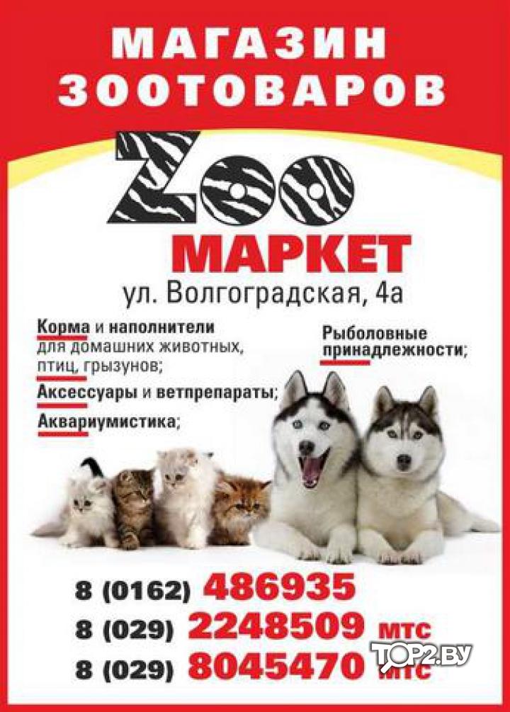Лечебный корм для собак при заболевании жкт